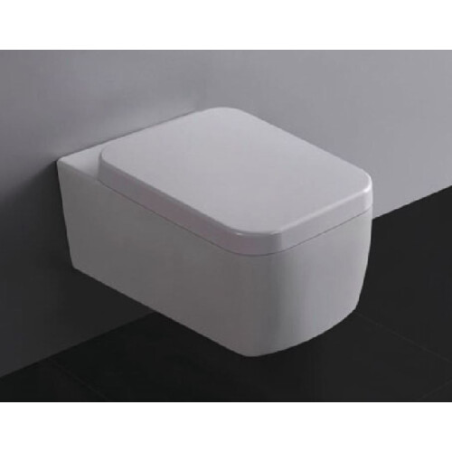 Mueller Larx wc pot met toiletzitting diepspoel wit